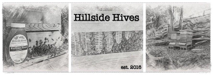 HillsideHivesCover